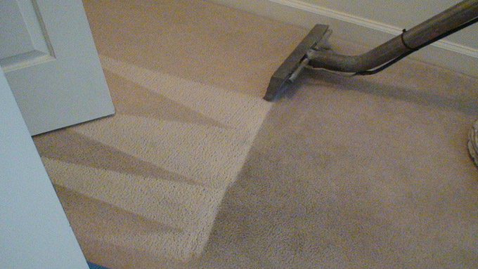 Image Result For Where To Get Your Area Rug Cleaned